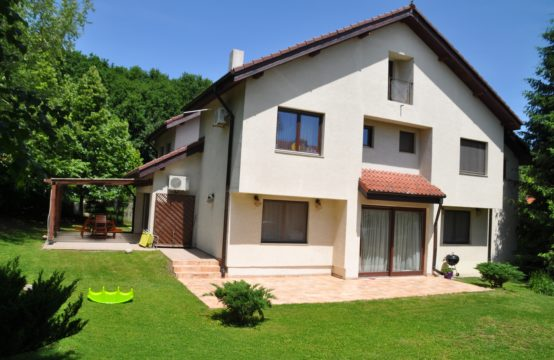 Bright and spacious villa, furnished, Iancu Nicolae area