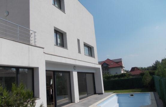 Vila cu piscina, modern mobilata, zona Iancu Nicolae