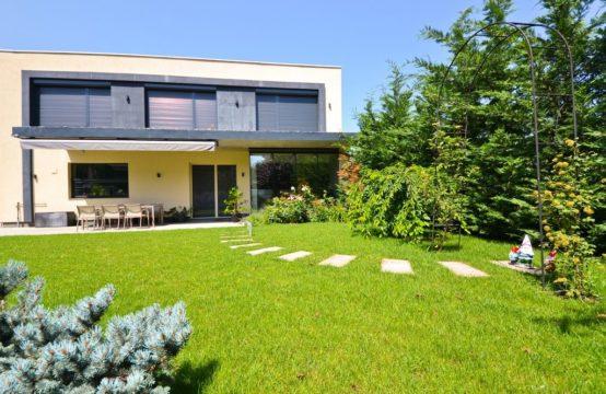 Vila de lux, cu curte proprie, zona Iancu Nicolae