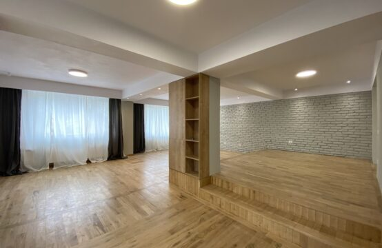Modern, renovated villa, Iancu Nicolae area
